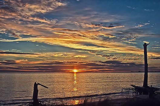 Serene Sunrise by Sandy Schepis