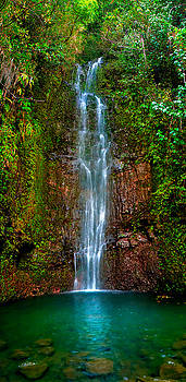 Serene Waterfall by Monica and Michael Sweet