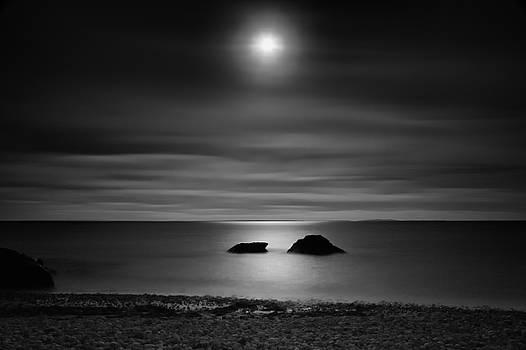 Serenity by Hali Sowle