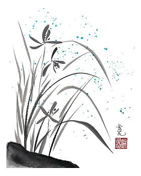 Oiyee At Oystudio - Orchids Blooming Amidst The Summer Rain