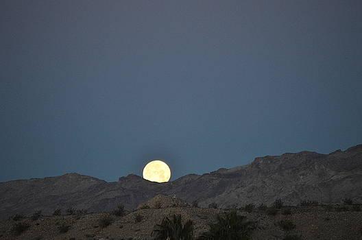 Setting Moon by Sue Houston