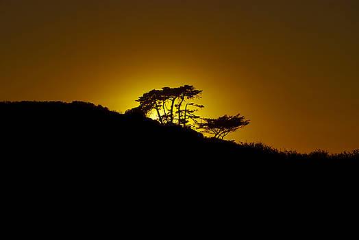 Setting Sun by Dennis Reagan