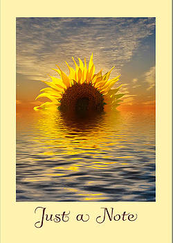 Setting Sun-Flower Note Card by Geraldine Alexander