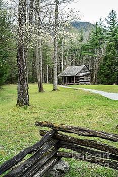 Settler's Mountain Cabin by Debbie Green
