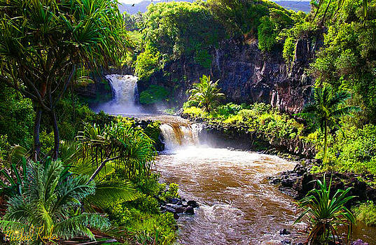 Seven Sacred Pools Maui by Michael Rucker