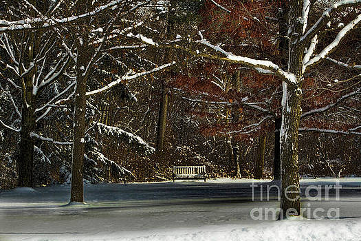 Shade of Winter by Marilyn Cornwell