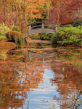 Shaded Bridge by Iris Greenwell