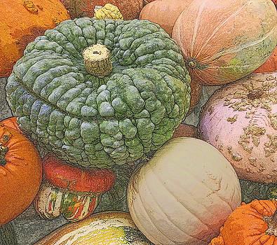 Shades of Autumn by Suzy Piatt