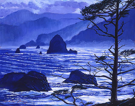 Shades Of Pacific Blue by David Lloyd Glover