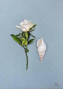 Shades of white by Elena Kolotusha