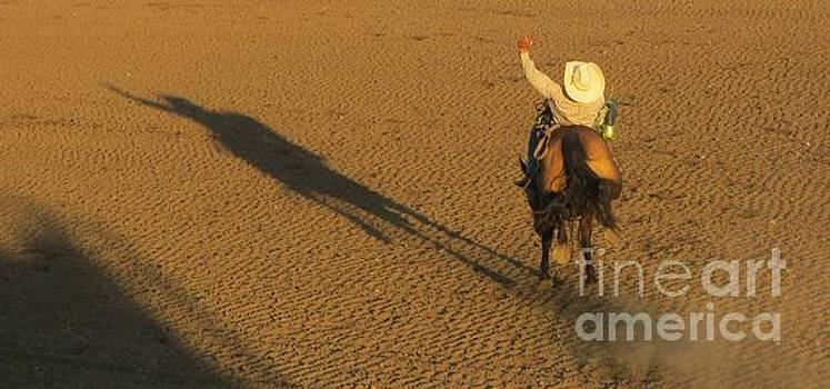 Shadow Action by John Malone