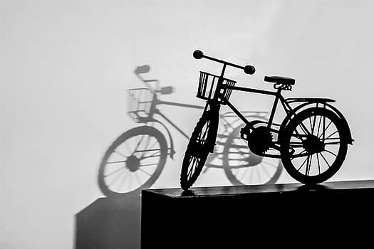 Shadow Play - BW by Ramabhadran Thirupattur