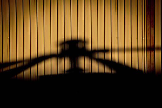 Shadow Rotor by Paul Job