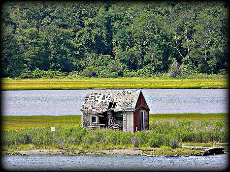 Shanty by Diane Valliere