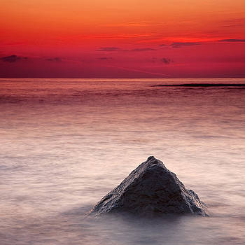 Shark Fin by Evgeni Dinev
