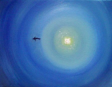 Shark by Hannah Curran