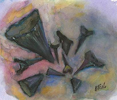 Sharks Teeth by Bev Veals