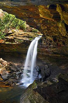Sharp Falls by Lj Lambert