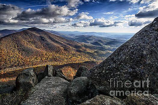 Sharp Top View by Thomas R Fletcher
