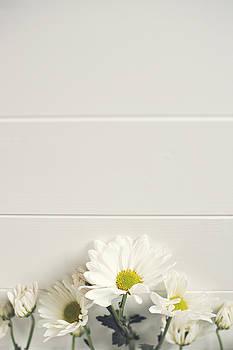 Shasta Daisies Cropped 1 by Di Kerpan