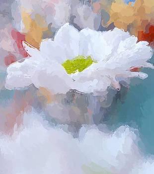 Shasta daisy by Anthony Fishburne