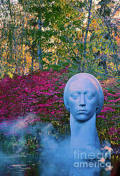 She Comes in Colors by Todd Breitling
