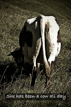 She has been a cow all day by Frank Tschakert