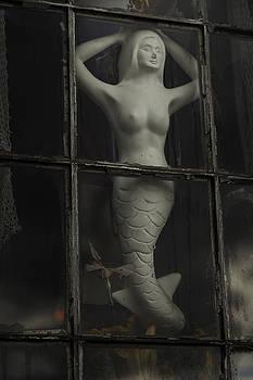 She Waits by Nicole Robinson
