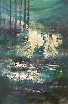 Sheen Falls by Joyce Garvey