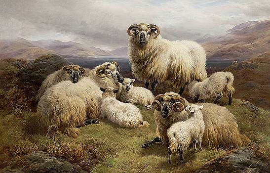 Sheep in a Highland landscape by William Watson