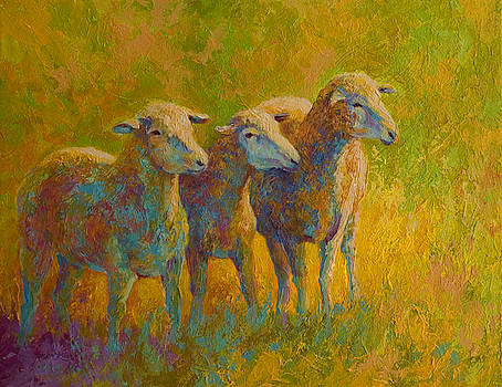 Marion Rose - Sheep Trio