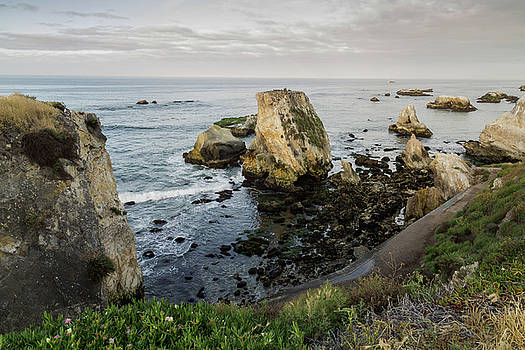 Shell Beach Overlook by John Daly