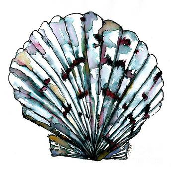Shell Collection by Bev Veals