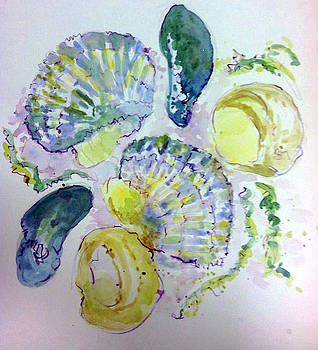 Shells by Donna Eaton