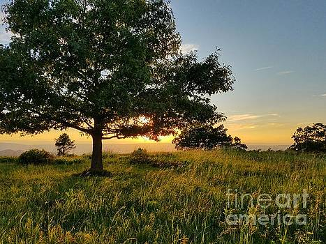 Shenandoah Golden Hour by Sean Cupp