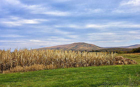 Shenandoah Valley Virginia - autumn scene by Brendan Reals
