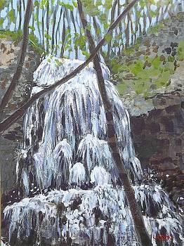 Sherman Falls by Fred Urron
