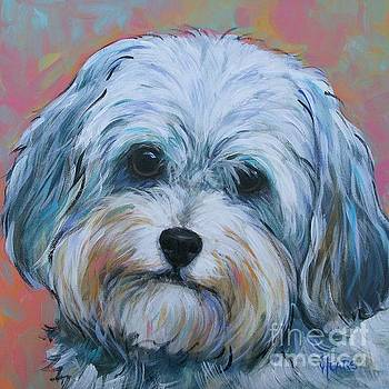 Shih Tzu by Vickie Fears