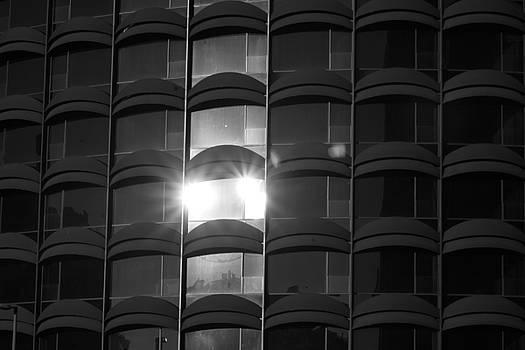 Shimmering Light by Malik Jaffer