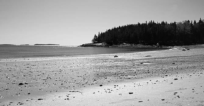 Corinne Rhode - Shimmering Sand