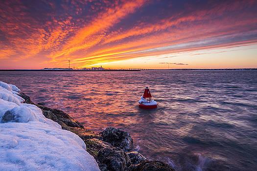 Shinnecock Bay Frozen Buoy by Ryan Moore