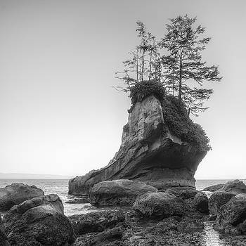 Shoe Rock by Chad Tracy