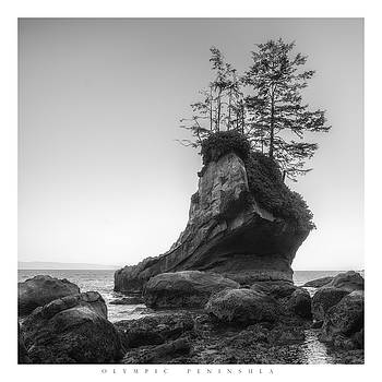 Shoe Rock Poster by Chad Tracy