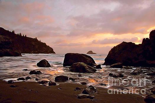 Landscape- Sunset at the Pasific by Feryal Faye Berber