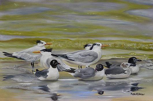 Shorebird Group by Phyllis Beiser