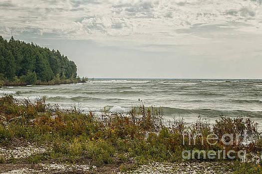 Shoreline by Margie Hurwich