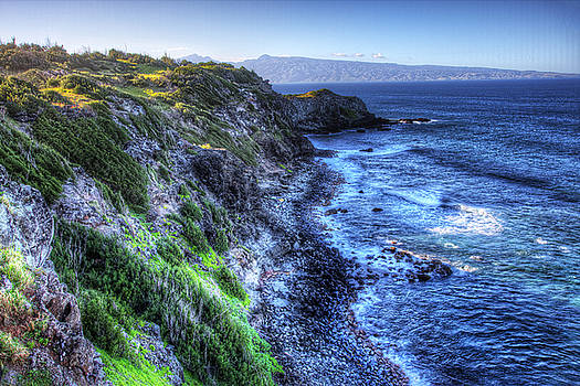 Shores of Maui by Shawn Everhart