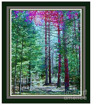 Shortcut Thru The Woods by Shirley Moravec