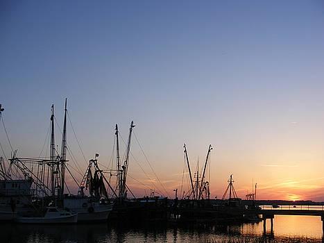Shrimp Boats at Port Royal by Elena Tudor