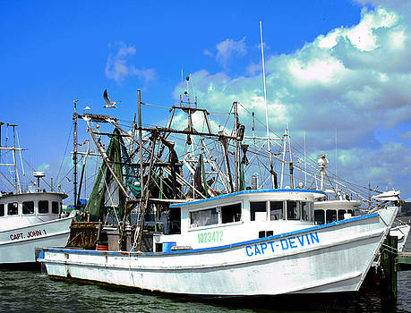 TONY GRIDER - Shrimp Boats